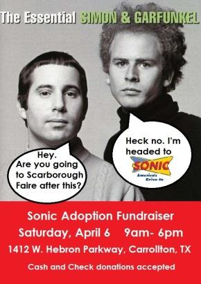 Sonic Fundraiser